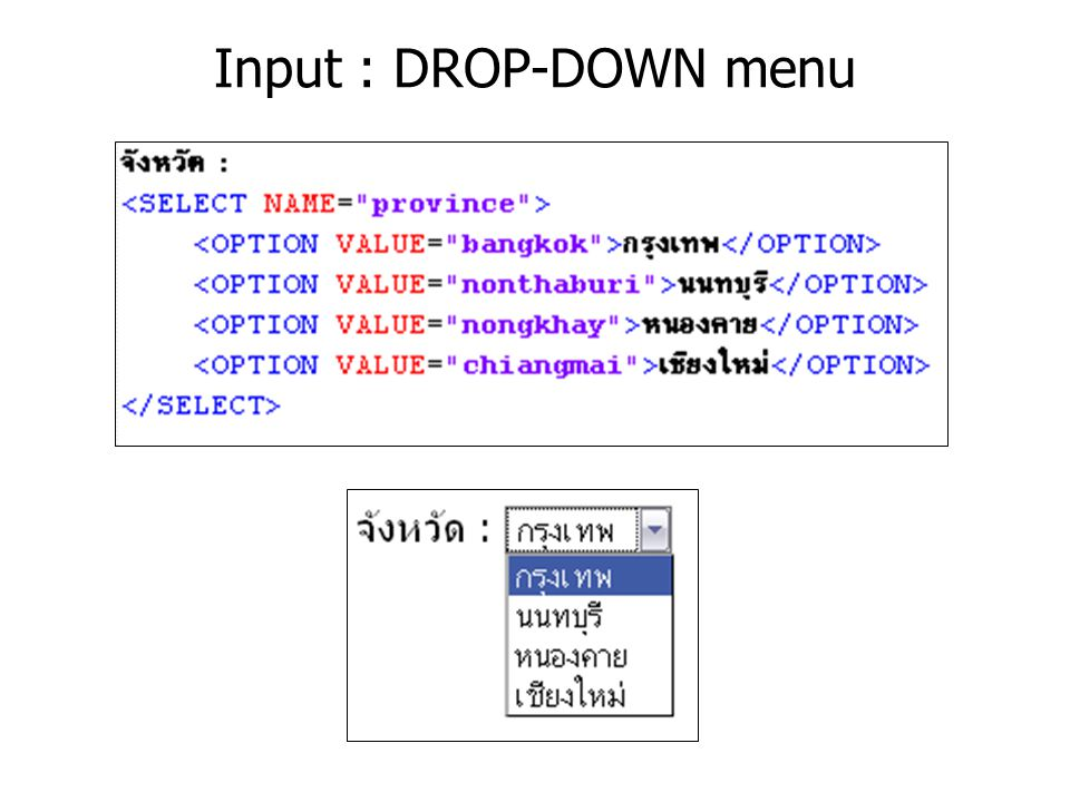 Input : DROP-DOWN menu