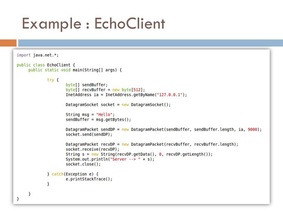 Example : EchoClient