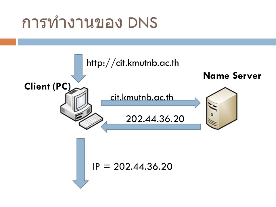 การทำงานของ DNS Name Server Client (PC) http://cit.kmutnb.ac.th cit.kmutnb.ac.th IP = 202.44.36.20 202.44.36.20