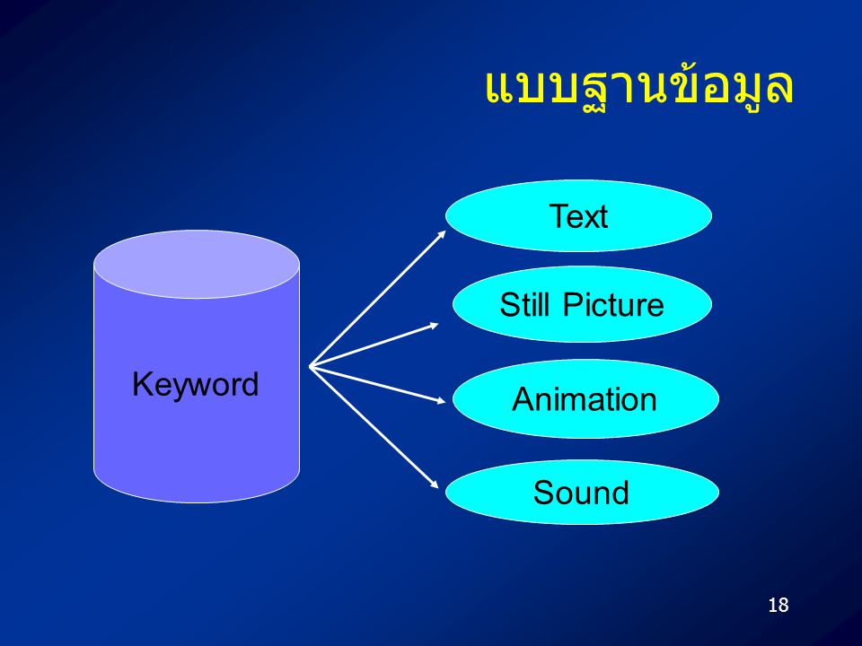 18 แบบฐานข้อมูล Keyword Text Still Picture Animation Sound