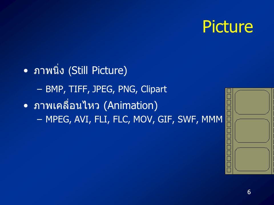 6 Picture ภาพนิ่ง (Still Picture) –BMP, TIFF, JPEG, PNG, Clipart ภาพเคลื่อนไหว (Animation) –MPEG, AVI, FLI, FLC, MOV, GIF, SWF, MMM