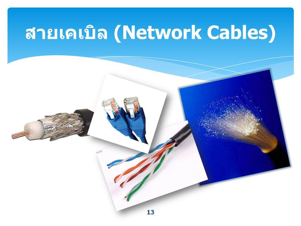 13 สายเคเบิล (Network Cables)
