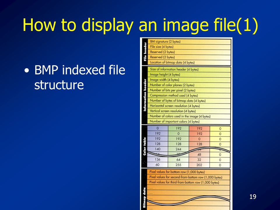 19 How to display an image file(1) BMP indexed file structure