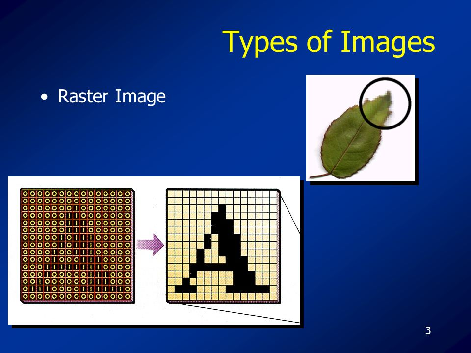 3 Types of Images Raster Image
