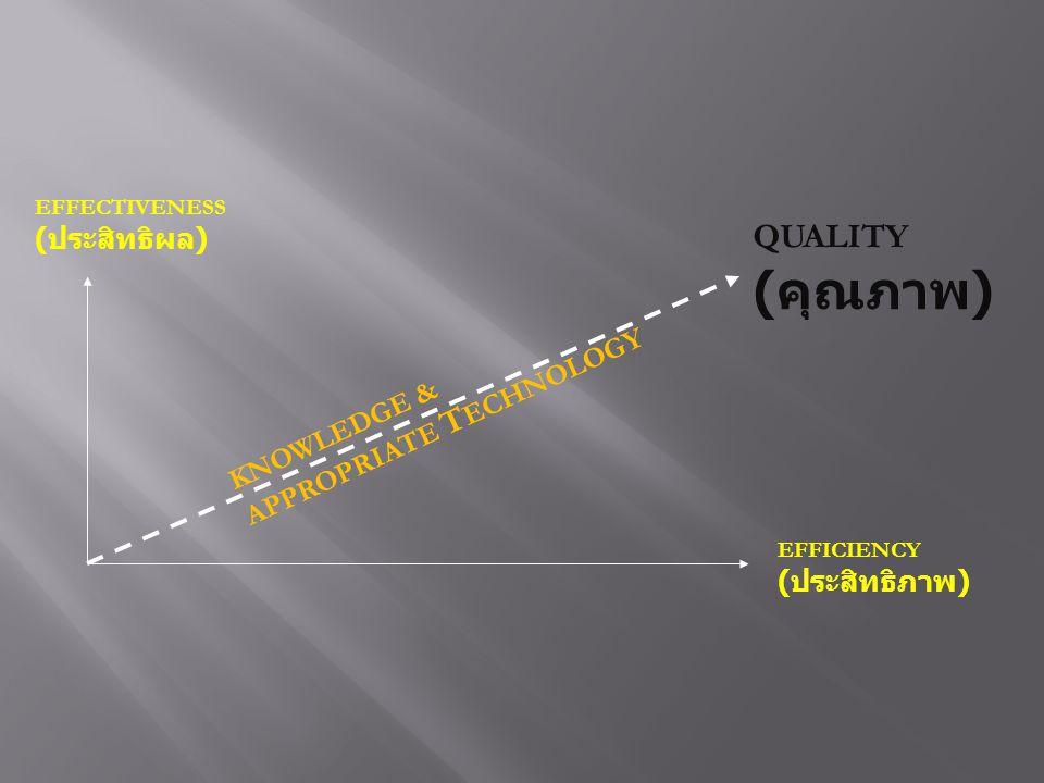 EFFECTIVENESS ( ประสิทธิผล ) EFFICIENCY ( ประสิทธิภาพ ) QUALITY ( คุณภาพ ) KNOWLEDGE & APPROPRIATE T ECHNOLOGY