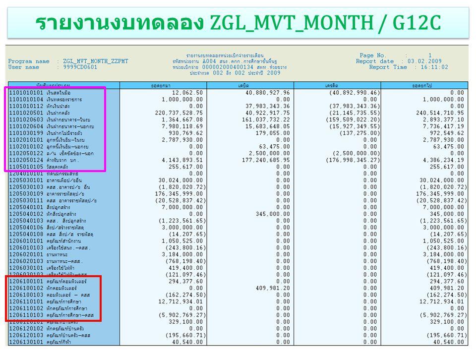3 รายงานงบทดลอง ZGL_MVT_MONTH / G12C