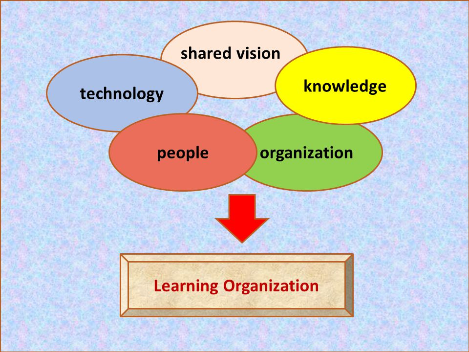 technology organization shared vision Learning Organization knowledge people