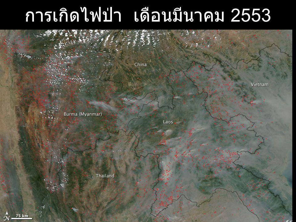 การเกิดไฟป่า เดือนมีนาคม 2553