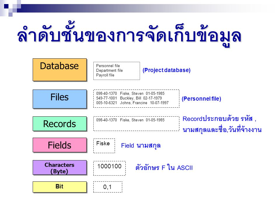 ลำดับชั้นของการจัดเก็บข้อมูล Database Files Records Fields Characters (Byte) Bit Recordประกอบด้วย รหัส, นามสกุลและชื่อ,วันที่จ้างงาน Personnel file Department file Payroll file (Project database) 098-40-1370 Fiske, Steven 01-05-1985 549-77-1001 Buckley, Bill 02-17-1979 005-10-6321 Johns, Francine 10-07-1997 (Personnel file) 098-40-1370 Fiske, Steven 01-05-1985 Fiske Field นามสกุล 1000100 ตัวอักษร F ใน ASCII 0,1