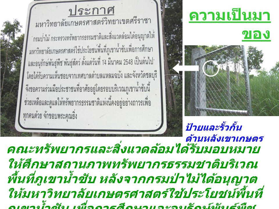 3 ความหลากชนิดของพรรณไม้ยืนต้นและสัตว์ป่าบริเวณป่า เขาเกษตร มหาวิทยาลัยเกษตรศาสตร์ วิทยาเขตศรีราชา จังหวัดชลบุรี วาง หมุดก ริด สัตว์ ป่า พรรณไม้ยืนต้น โครงสร้าง ทีมวิจัย รศ.