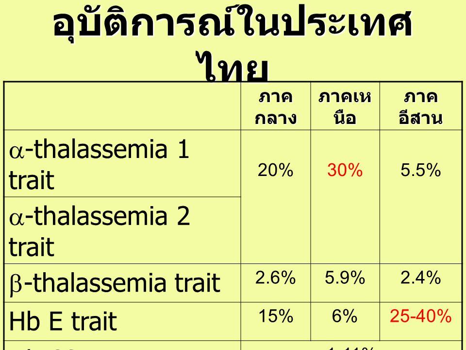 อุบัติการณ์ในประเทศ ไทย ภาค กลาง ภาคเห นือ ภาค อีสาน  -thalassemia 1 trait 20%30%5.5%  -thalassemia 2 trait  -thalassemia trait 2.6%5.9%2.4% Hb E t