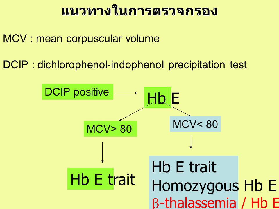 แนวทางในการตรวจกรอง MCV : mean corpuscular volume DCIP : dichlorophenol-indophenol precipitation test MCV> 80 DCIP positive Hb E Hb E trait MCV< 80 Hb