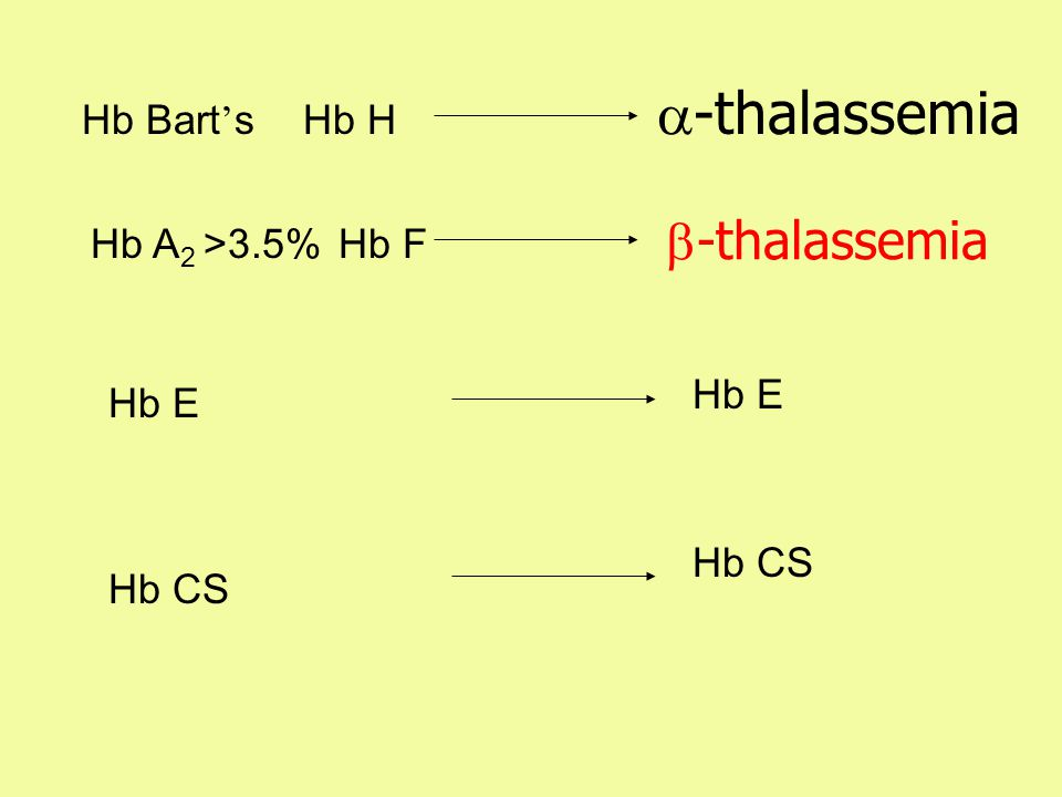 Hb F Hb HHb Bart ' s Hb A 2 >3.5% Hb E Hb CS  -thalassemia Hb CS  -thalassemia Hb E