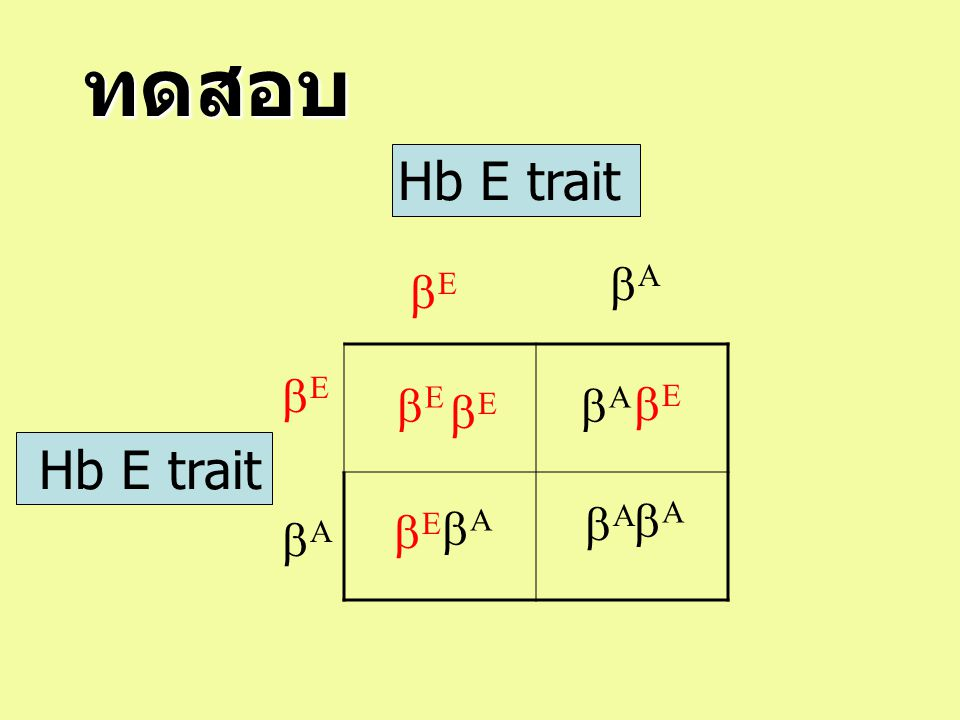 ทดสอบ Hb E trait  Hb E trait            