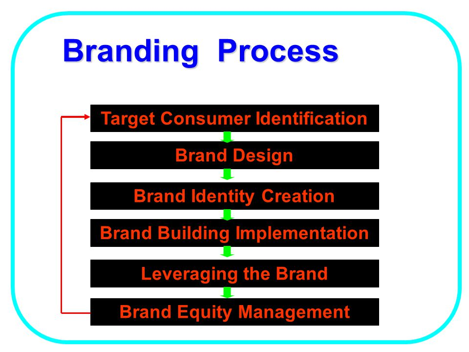 Brand Building Model Awareness & Recognition Relevant Differentiation Accessibility Values Emotional Connection