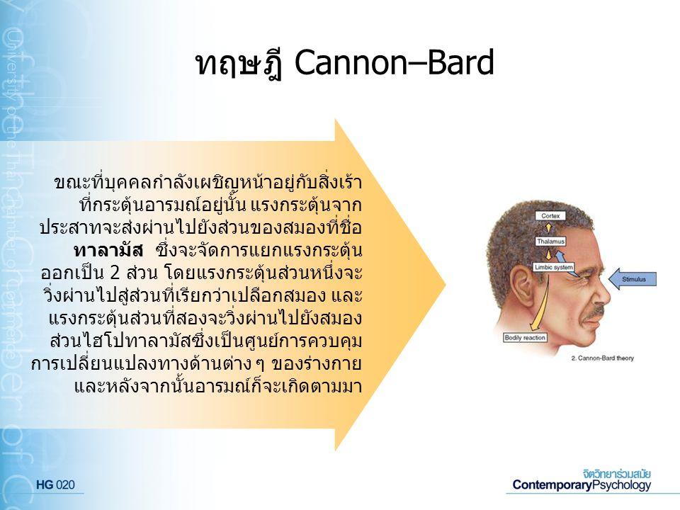 ทฤษฎี Cannon–Bard ขณะที่บุคคลกำลังเผชิญหน้าอยู่กับสิ่งเร้า ที่กระตุ้นอารมณ์อยู่นั้น แรงกระตุ้นจาก ประสาทจะส่งผ่านไปยังส่วนของสมองที่ชื่อ ทาลามัส ซึ่งจ