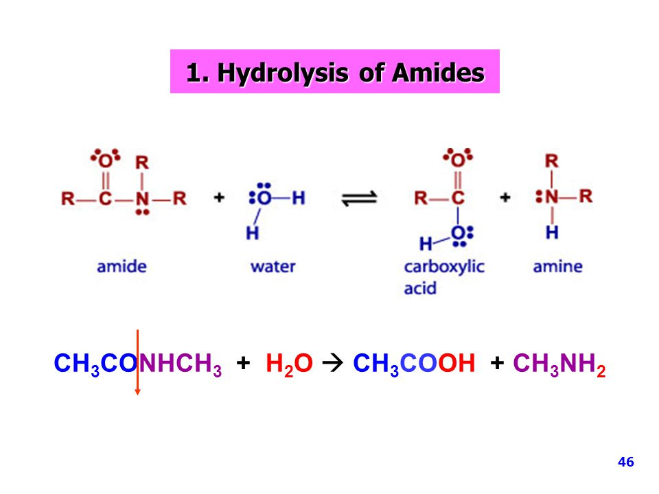 1.Hydrolysis of Amides 1. Hydrolysis of Amides CH 3 CONHCH 3 + H 2 O  CH 3 COOH + CH 3 NH 2 46