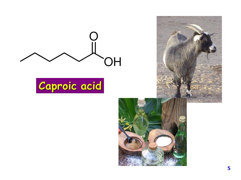Caproic acid 5