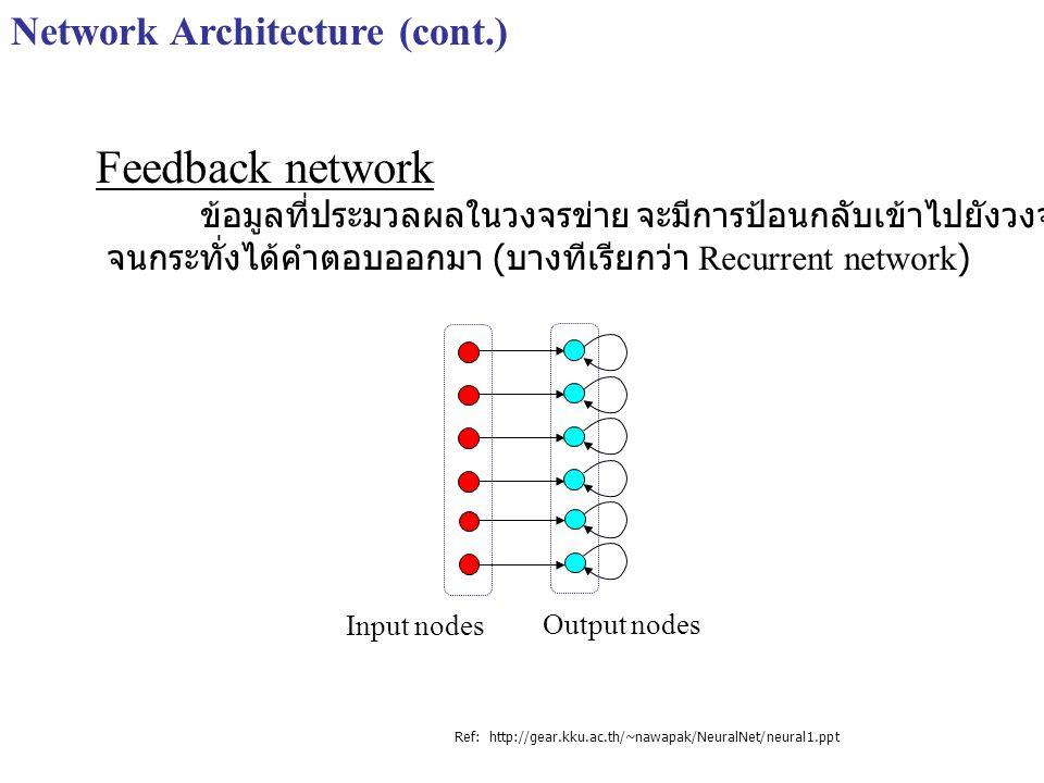 Network Architecture (cont.) Feedback network ข้อมูลที่ประมวลผลในวงจรข่าย จะมีการป้อนกลับเข้าไปยังวงจรข่ายหลายๆครั้ง จนกระทั่งได้คำตอบออกมา ( บางทีเรี