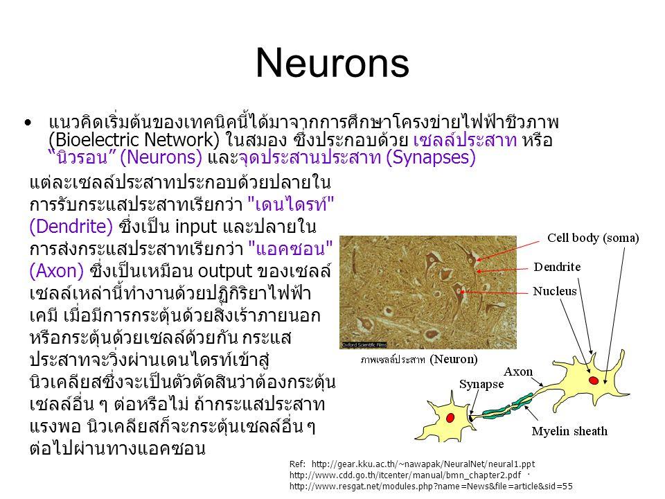"""Neurons แนวคิดเริ่มต้นของเทคนิคนี้ได้มาจากการศึกษาโครงข่ายไฟฟ้าชีวภาพ (Bioelectric Network) ในสมอง ซึ่งประกอบด้วย เซลล์ประสาท หรือ """"นิวรอน"""" (Neurons)"""