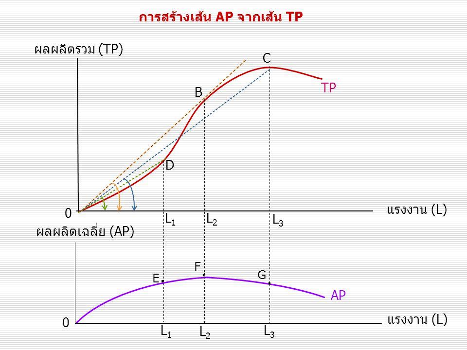 การสร้างเส้น AP จากเส้น TP ผลผลิตรวม (TP) แรงงาน (L) TP 0 B D C 0 แรงงาน (L) ผลผลิตเฉลี่ย (AP) L1L1 AP L2L2 L3L3 L1L1 L2L2 L3L3 E.E.