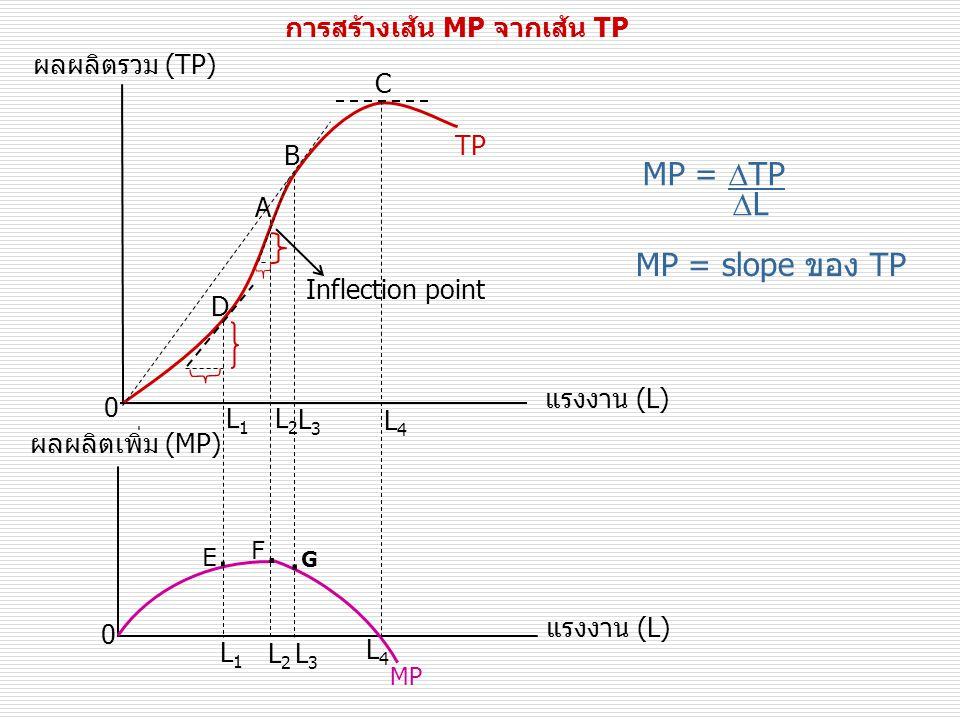 การสร้างเส้น MP จากเส้น TP MP =  TP  L MP = slope ของ TP ผลผลิตรวม (TP) แรงงาน (L) TP 0 B A C 0 แรงงาน (L) ผลผลิตเพิ่ม (MP) MP Inflection point D L3L3 L3L3 L2L2 L4L4 L1L1 L4L4 L2L2 L1L1 E.E.
