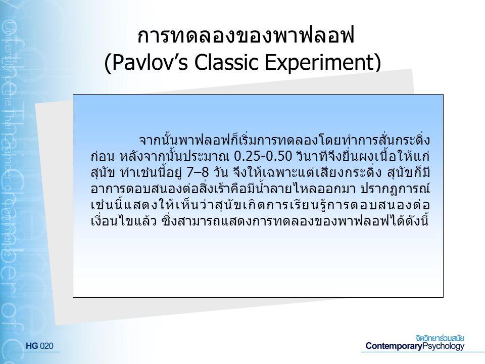การทดลองของพาฟลอฟ (Pavlov's Classic Experiment) จากนั้นพาฟลอฟก็เริ่มการทดลองโดยทำการสั่นกระดิ่ง ก่อน หลังจากนั้นประมาณ 0.25-0.50 วินาทีจึงยื่นผงเนื้อใ