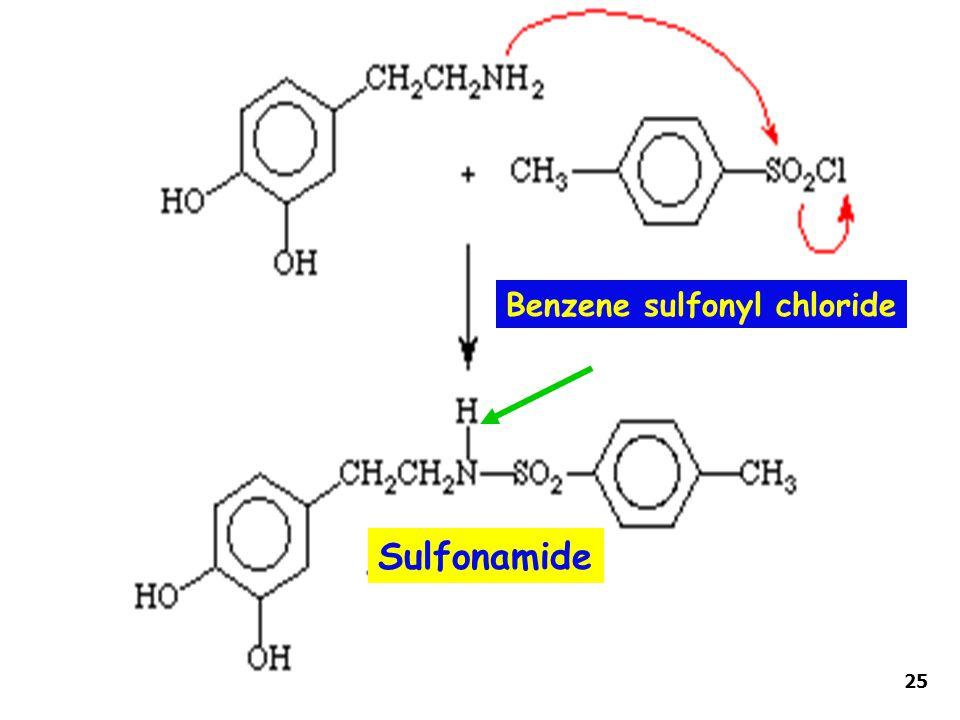 Benzene sulfonyl chloride Sulfonamide 25