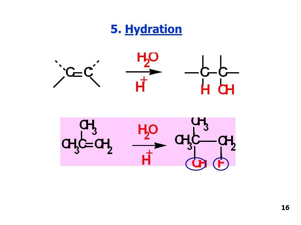 5. Hydration 16