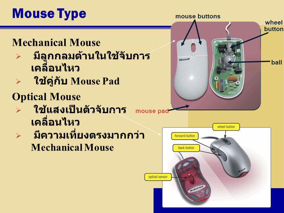 Mouse Type Mechanical Mouse  มีลูกกลมด้านในใช้จับการ เคลื่อนไหว  ใช้คู่กับ Mouse Pad Optical Mouse  ใช้แสงเป็นตัวจับการ เคลื่อนไหว  มีความเที่ยงตร