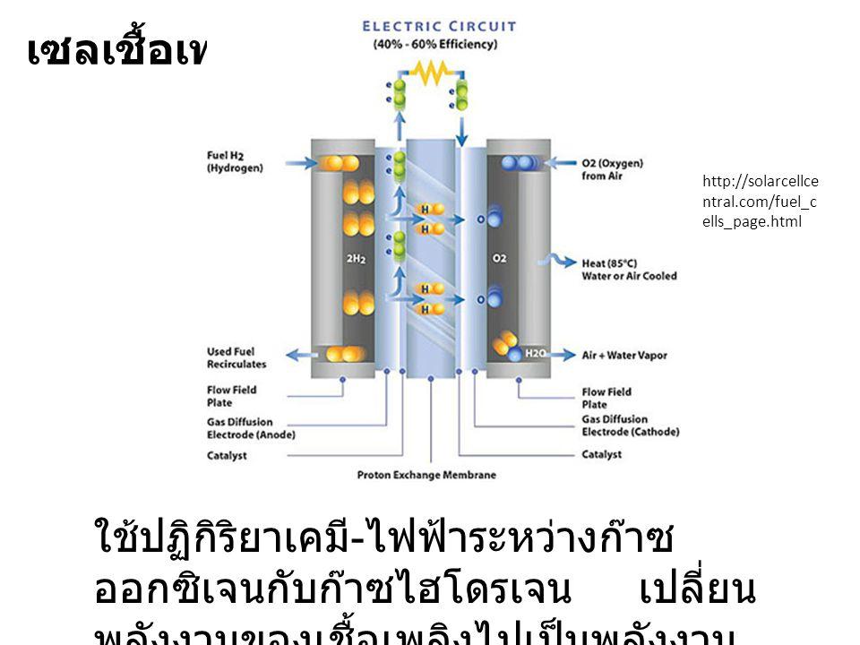 เซลเชื้อเพลิง http://solarcellce ntral.com/fuel_c ells_page.html ใช้ปฏิกิริยาเคมี - ไฟฟ้าระหว่างก๊าซ ออกซิเจนกับก๊าซไฮโดรเจน เปลี่ยน พลังงานของเชื้อเพลิงไปเป็นพลังงาน ไฟฟ้า