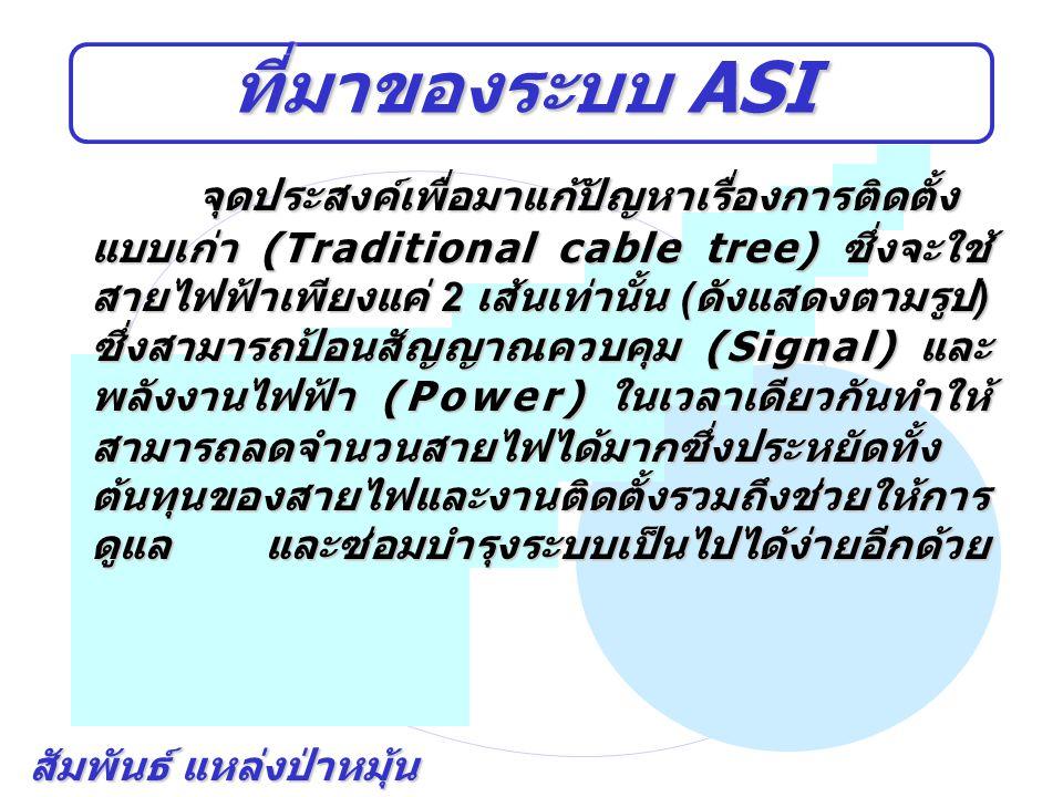 สัมพันธ์ แหล่งป่าหมุ้น ที่มาของระบบ ASI จุดประสงค์เพื่อมาแก้ปัญหาเรื่องการติดตั้ง แบบเก่า (Traditional cable tree) ซึ่งจะใช้ สายไฟฟ้าเพียงแค่ 2 เส้นเท