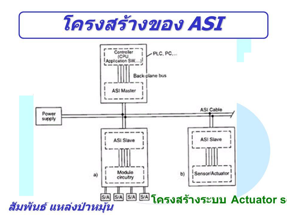 สัมพันธ์ แหล่งป่าหมุ้น ตัวอย่าง ASI ตัวอย่างเครื่องจักร Pick and Place