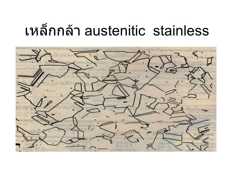 เหล็กกล้า austenitic stainless