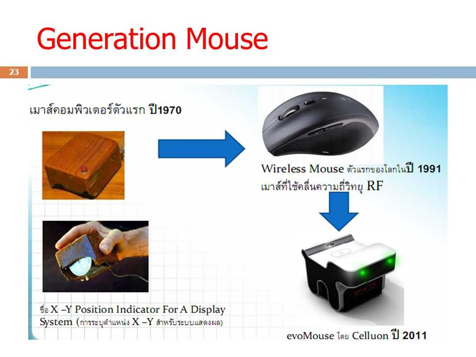 Generation Mouse 23