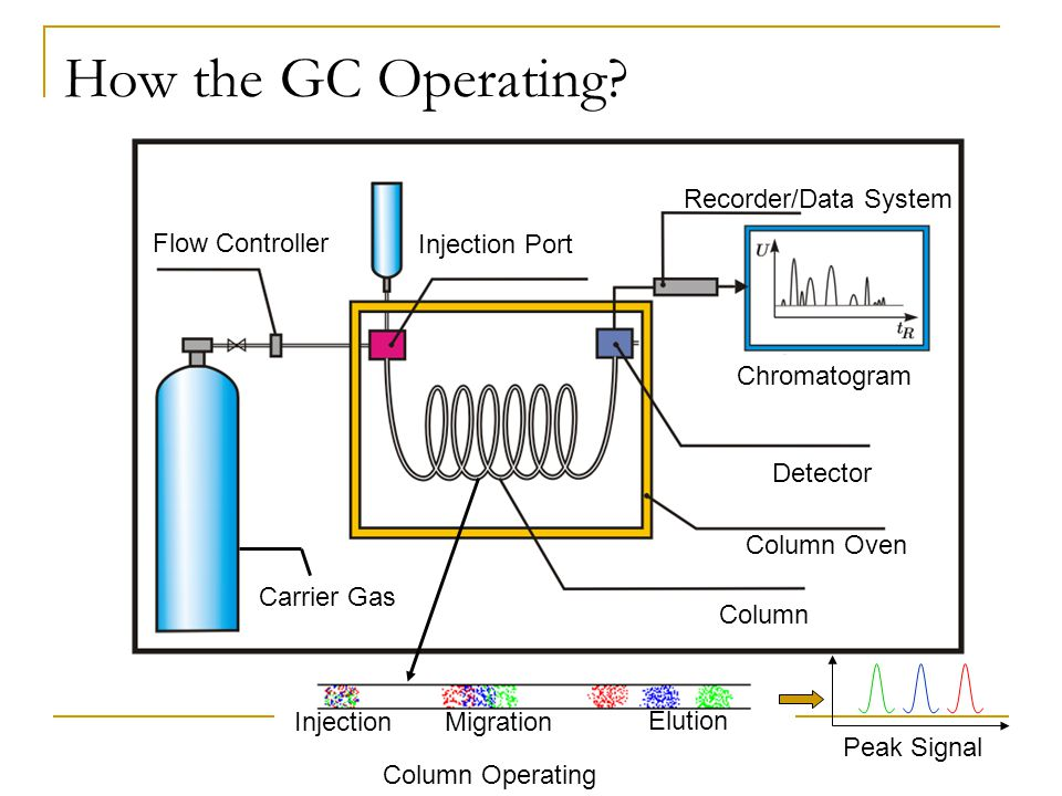 How the GC Operating? InjectionMigration Elution Peak Signal Flow Controller Injection Port Column Oven Detector Column Recorder/Data System Carrier G