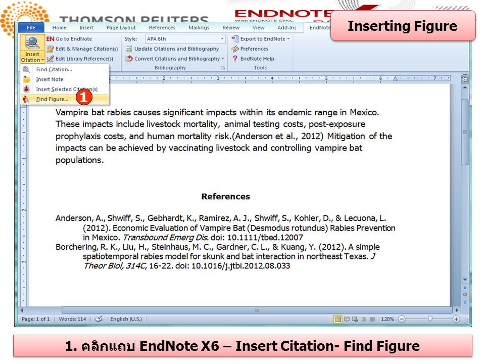 Inserting Figure 1 1. คลิกแถบ EndNote X6 – Insert Citation- Find Figure