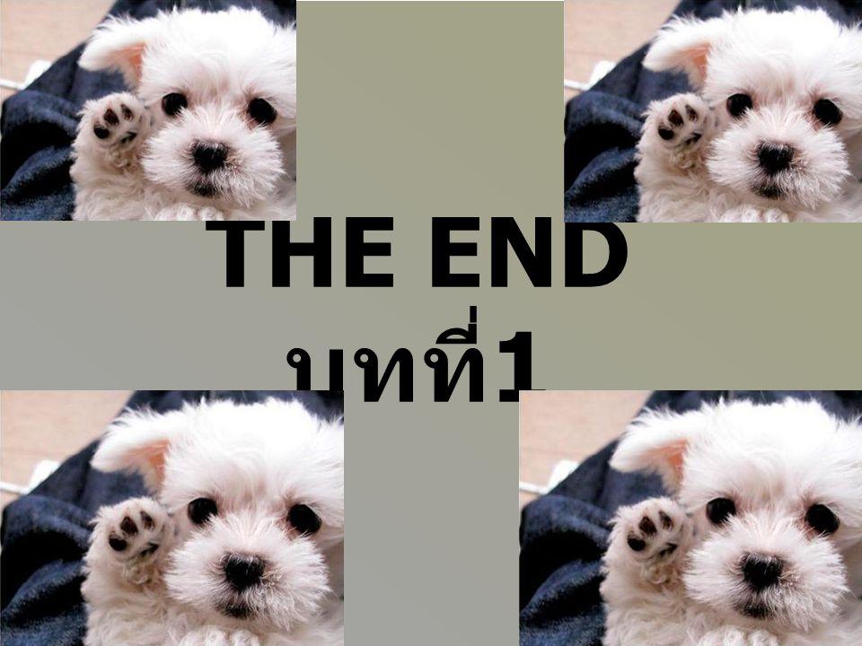 THE END บทที่ 1