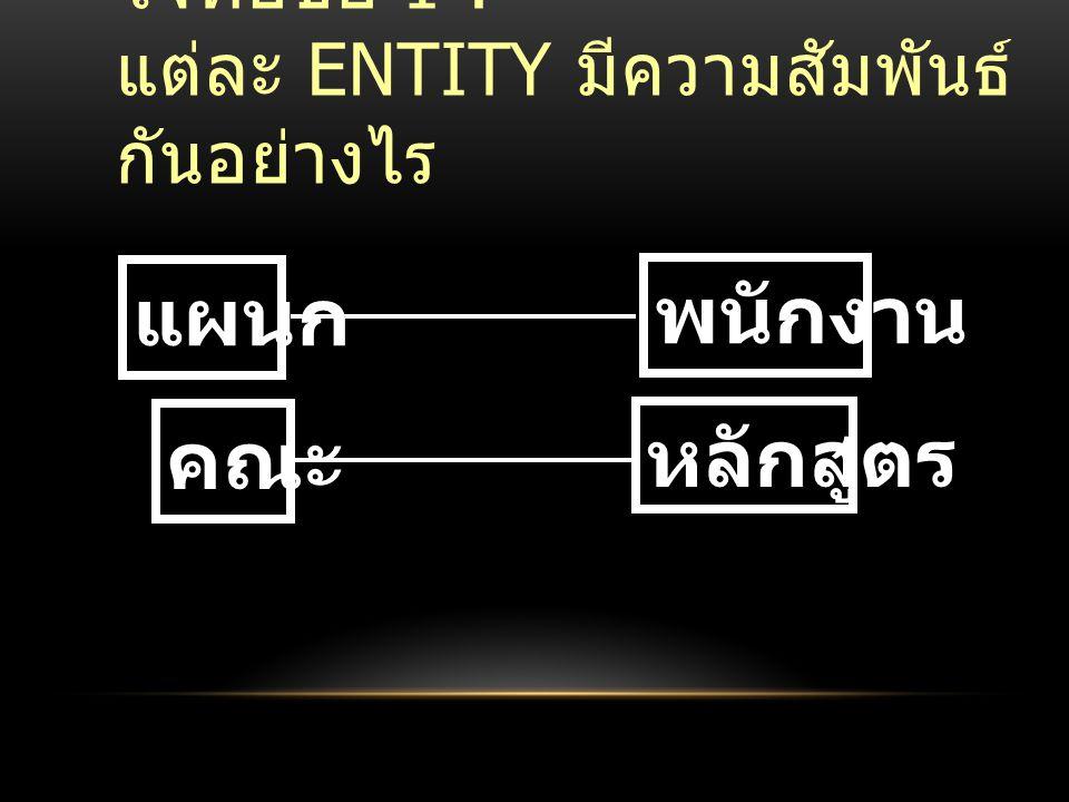 โจทย์ข้อ 1 : แต่ละ ENTITY มีความสัมพันธ์ กันอย่างไร แผนก พนักงาน คณะ หลักสูตร