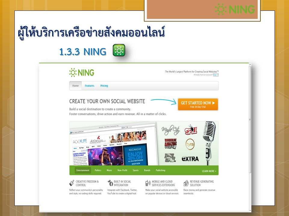 1.3.3 NING ผู้ให้บริการเครือข่ายสังคมออนไลน์