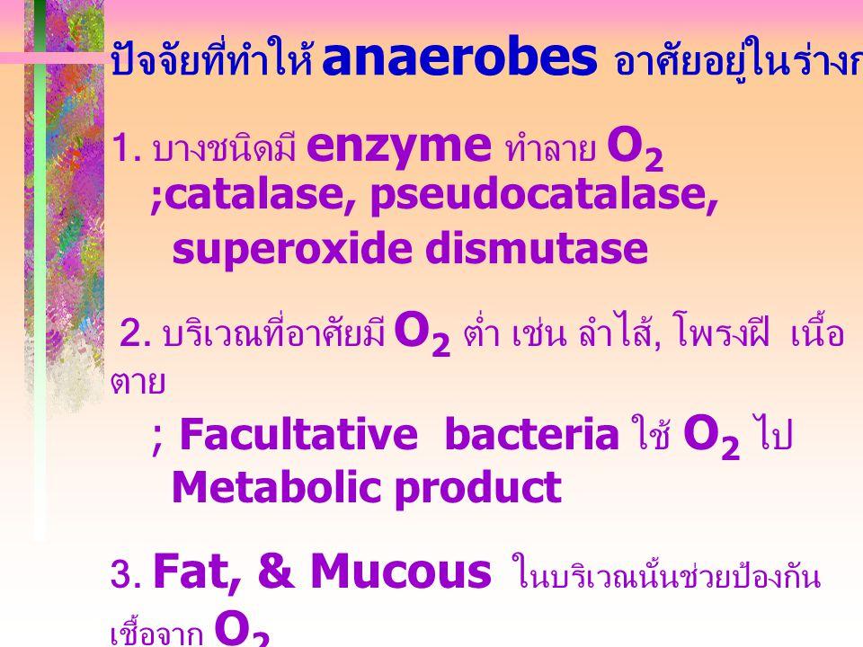 1. บางชนิดมี enzyme ทำลาย O 2 ; catalase, pseudocatalase, superoxide dismutase 2. บริเวณที่อาศัยมี O 2 ต่ำ เช่น ลำไส้, โพรงฝี เนื้อ ตาย ; Facultative