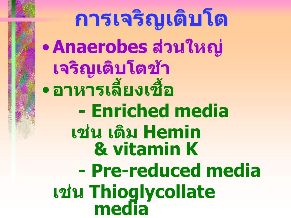 การเจริญเติบโต Anaerobes ส่วนใหญ่ เจริญเติบโตช้า อาหารเลี้ยงเชื้อ - Enriched media เช่น เติม Hemin & vitamin K - Pre-reduced media เช่น Thioglycollate
