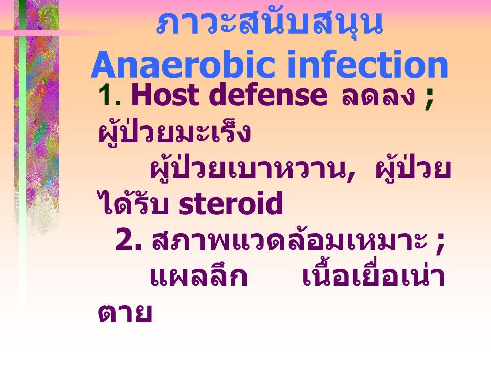 ภาวะสนับสนุน Anaerobic infection 1. Host defense ลดลง ; ผู้ป่วยมะเร็ง ผู้ป่วยเบาหวาน, ผู้ป่วย ได้รับ steroid 2. สภาพแวดล้อมเหมาะ ; แผลลึก เนื้อเยื่อเน