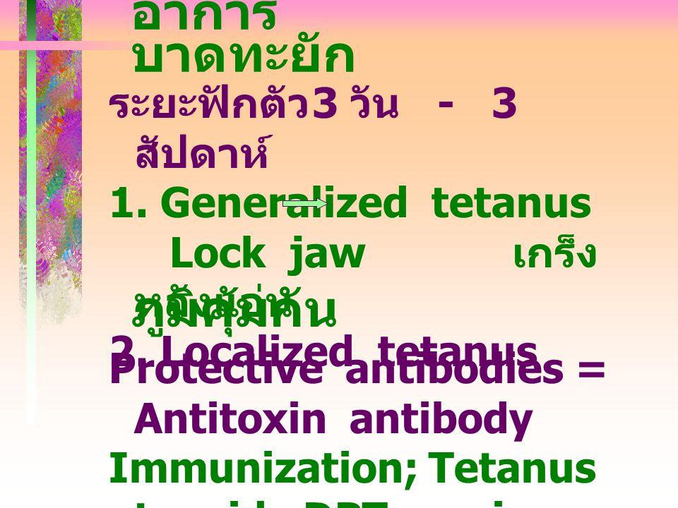 อาการ บาดทะยัก ภูมิคุ้มกัน Protective antibodies = Antitoxin antibody Immunization; Tetanus toxoid, DPT vaccine Tetanus antitoxin ระยะฟักตัว 3 วัน - 3