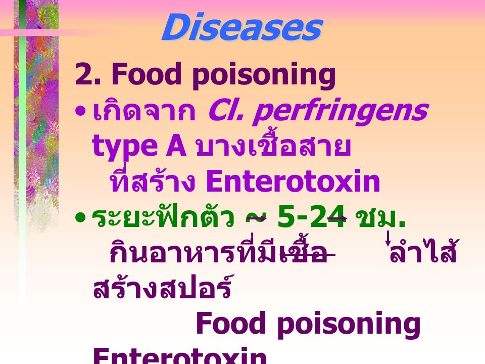 Diseases 2.Food poisoning เกิดจาก Cl.