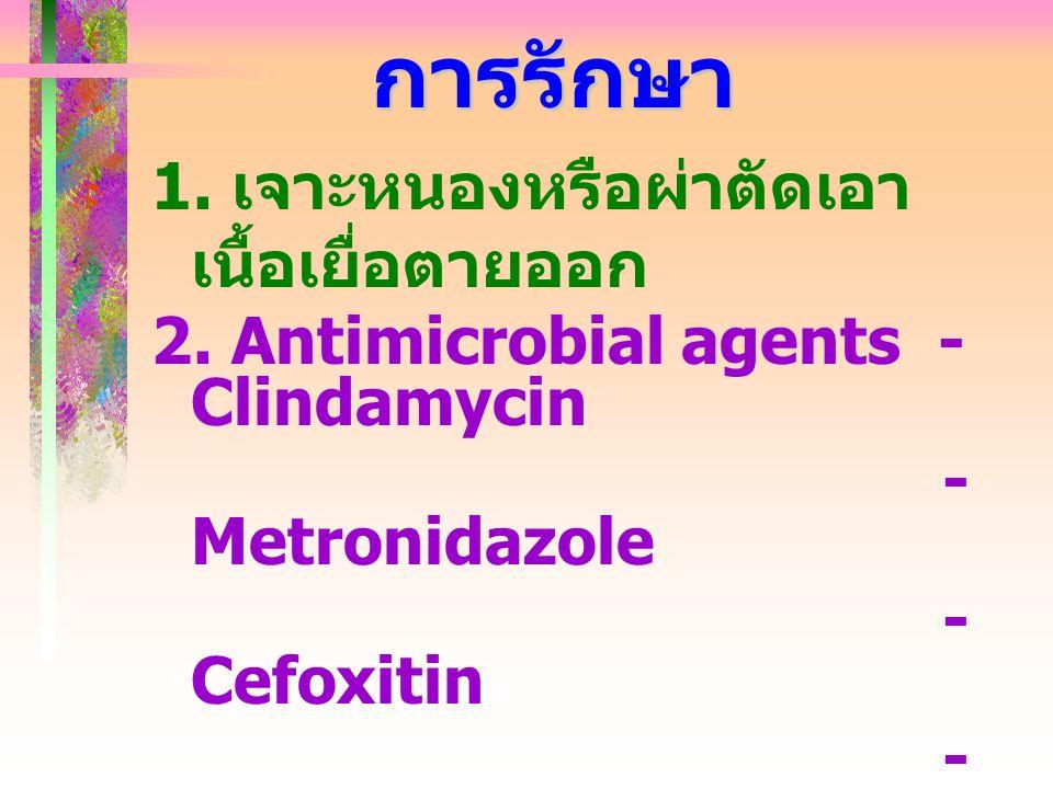 การรักษา 1. เจาะหนองหรือผ่าตัดเอา เนื้อเยื่อตายออก 2. Antimicrobial agents - Clindamycin - Metronidazole - Cefoxitin - Penicillin G 3. Antitoxin 4. Hy