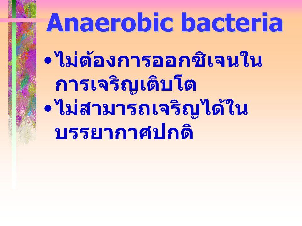 Anaerobic bacteria ไม่ต้องการออกซิเจนใน การเจริญเติบโต ไม่สามารถเจริญได้ใน บรรยากาศปกติ