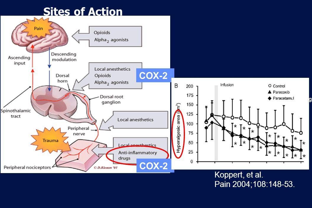 37 Revision 10, 10-26-01 Sites of Action COX-2 Koppert, et al. Pain 2004;108:148-53. 40mg 1000mg