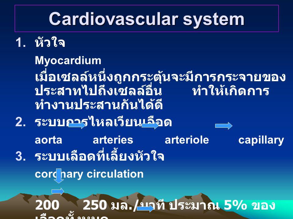 Cardiovascular system 1.
