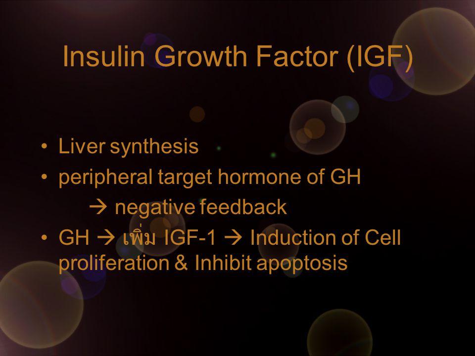IGF IGF-I & -II  bind IGFBPs (IGF-binding-protein) IGFBP3  major carrier protein for IGF-1  level correlate with GH level